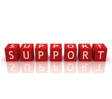 RE/MAX Elite Mason Support