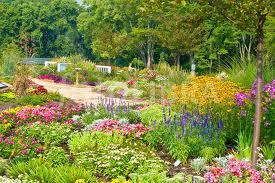 Floral Paradise Gardens Delhi Township Ohio