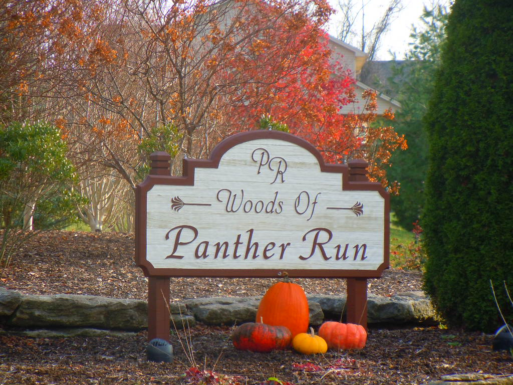 Woods of Panther Run Liberty Township