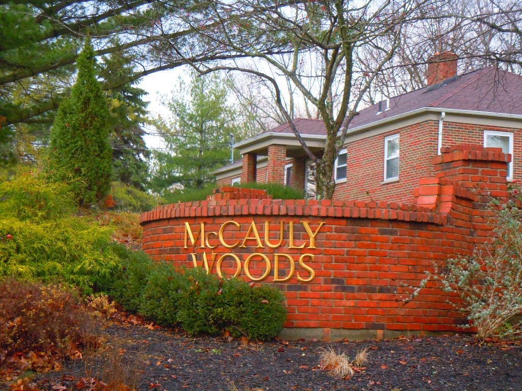 McCauly Woods Sycamore Township Ohio
